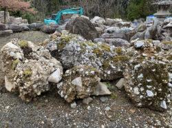 苔の生えたさざれ石