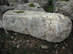 チャート石