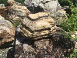 瀬田の虎石