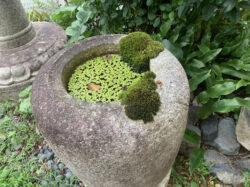 三州石製の棗型手水鉢
