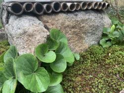 白川石製の角井筒
