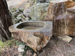 古い海石の手水鉢